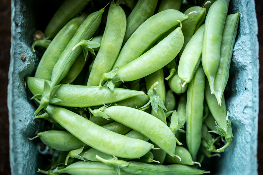 sugar snap peas2