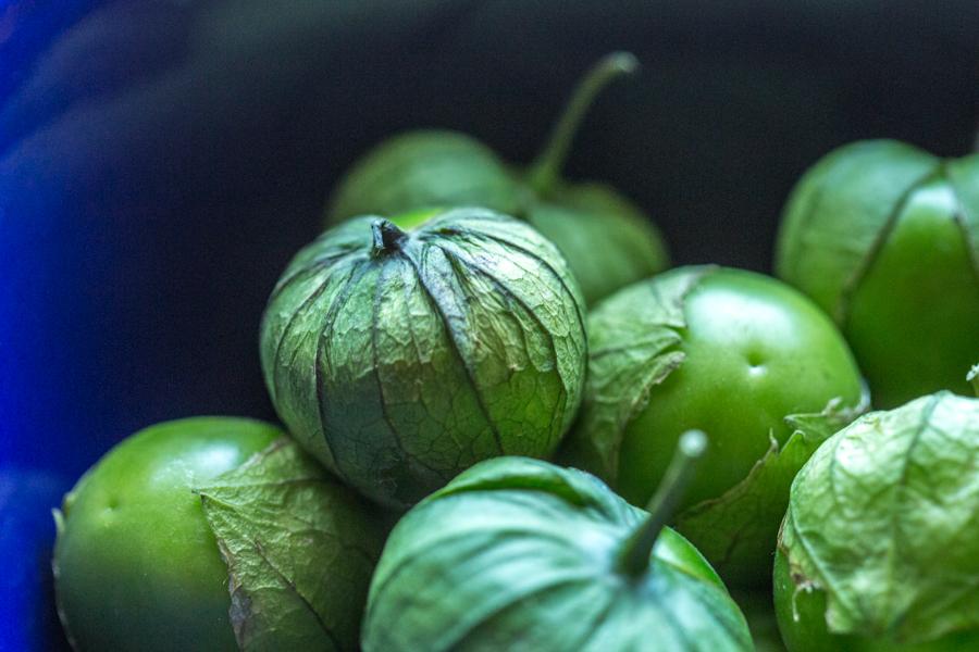 tomatillos 3